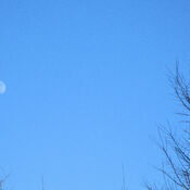 Moon in a Blue sky day in Ottawa