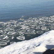 Ice rings on Lake Ontario
