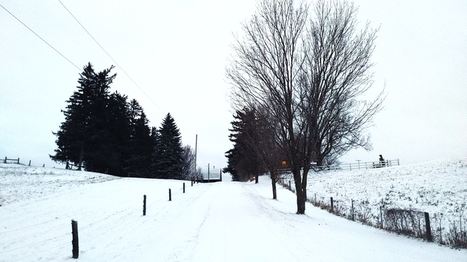 The view walking up our driveway tonight. St. George Brant, ON