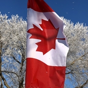 Canada Flag Calm Frosty Morning