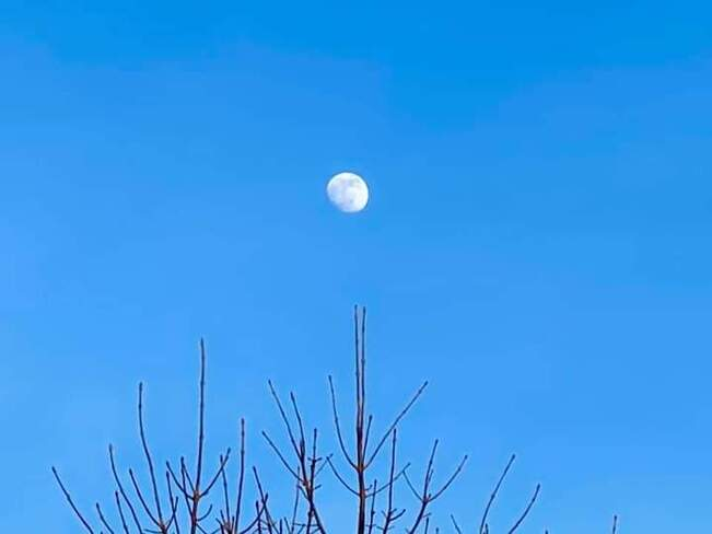 Moon over Port Union at 3 pm on January 25th Centennial Scarborough, ON