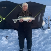 Lake Winnipeg Walleye