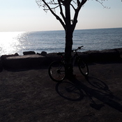 Great day for a bike ride along Lake Ontario March 3rd, 2021
