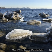 Lake ice Toronto skyline. Lamenting no more snow? #backyardweather