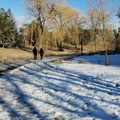 Peaceful Winter walking - Glen Shield Park in Thornhill - March 5 2021