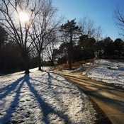 Beautiful sunny day - Glen Shield Park in Thornhill - March 5 2021