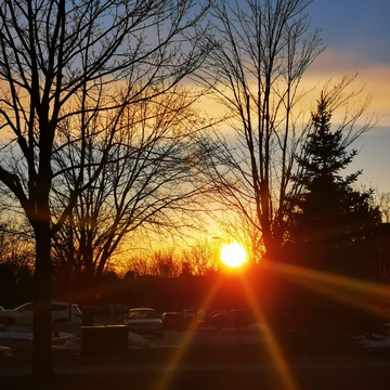 Beautiful sunset today but chilly - March 6 2021