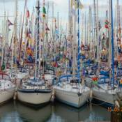 Harbour filled with boats from all of Europe and GB for annual festival