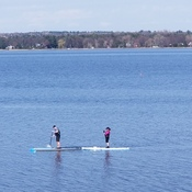 Paddle boarders are out on the Ottawa River!