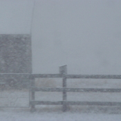Snow Storm at Leduc, AB
