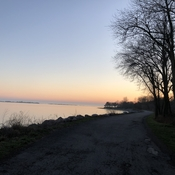 Evening walk through Presqu'ile