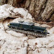 "Swiss Locomotive called ""Crocodile"""