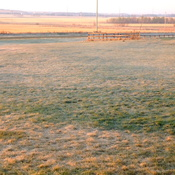 Frosty Morning Near Leduc