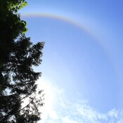 Sun Halo on Salt Spring